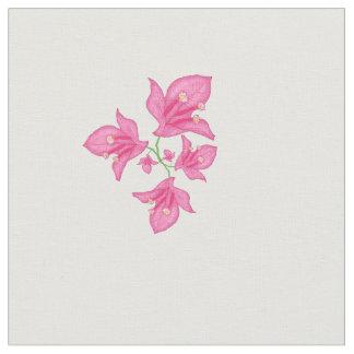 Blom- rosa Bougainvillea