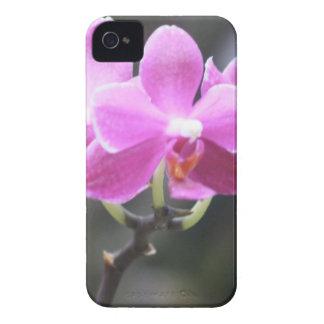 Blom- samling iPhone 4 Case-Mate skydd