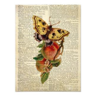 blom- vintageordbok för fjäril foton