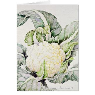 Blomkålstudie 1993 hälsningskort