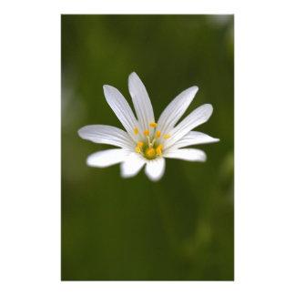 Blomma av den mer underbara stitchworten brevpapper