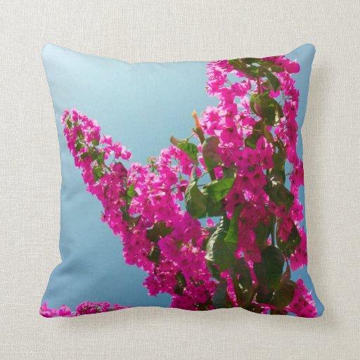 Blomma bougainvillea prydnadskuddar