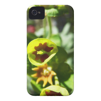 Blomma Case-Mate iPhone 4 Case