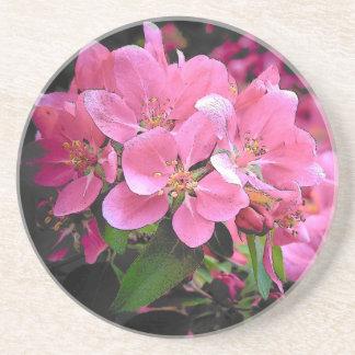 Blomma Crabapple Underlägg Sandsten