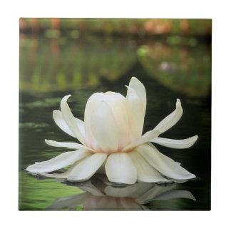 Blomma för amasonnäckros (Victoria Amazonica) Kakelplatta