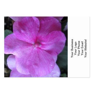 Blomma för Impatien lilaträdgård Set Av Breda Visitkort