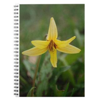 Blomma för lilja för vildminiatyrvår anteckningsbok