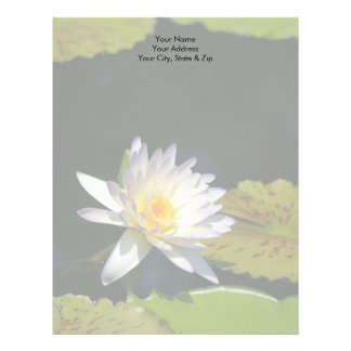 Blomma för vitlotusblommanäckros brevhuvud