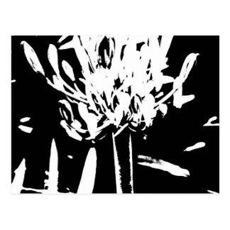 Blomma i svartvitt vykort