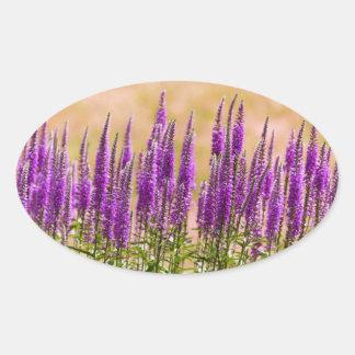 Blomma - jag drömm av lavendel ovalt klistermärke