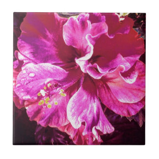 Blomma Kakelplatta