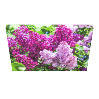 Blomma lilac. canvastryck