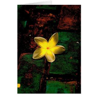 Blomma på kullersten hälsningskort