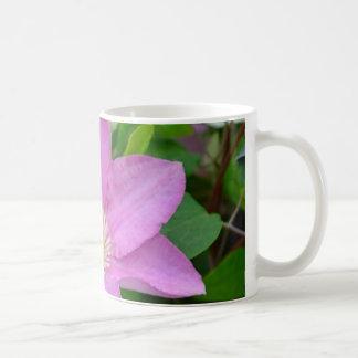 Blommablommar för purpurfärgad clematis kaffemugg