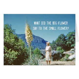 Blommahumor Hälsningskort