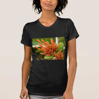 blommaknoppar tröjor