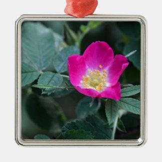 Blomman av det mjuka dunigt för vild steg julgransprydnad metall