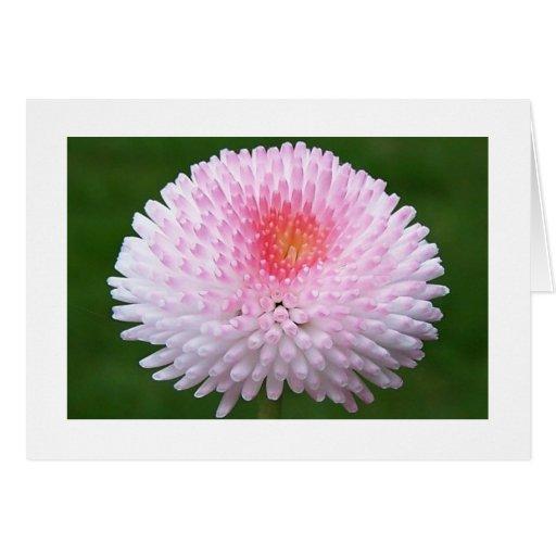 Blomman tackar dig att card hälsnings kort