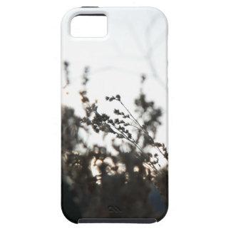 Blommaogräsfodral iPhone 5 Skydd