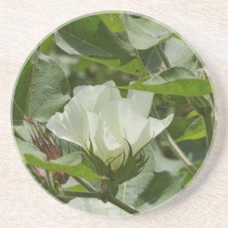 Blommar för vitbomullsskörd underlägg sandsten
