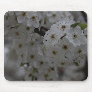 Blommar Mus Mattor