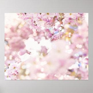 Blommarkörsbär (Prunusserrulata), tätt upp Poster