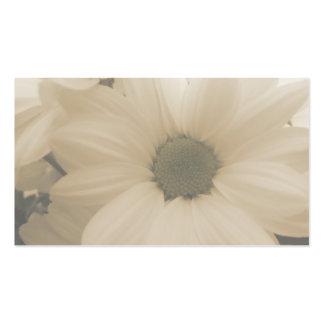 Blommavisitkort Set Av Standard Visitkort