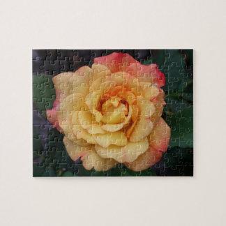 Blommigt för rosor och för gult för fredro härlig pussel