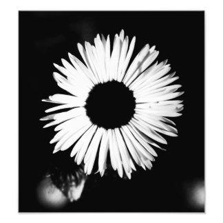 blommigt fotografiskt tryck