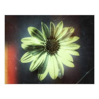 blommigt foton