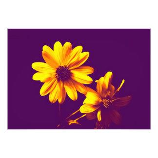 blommigt fotografi