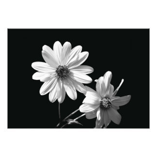 blommigt fotografier