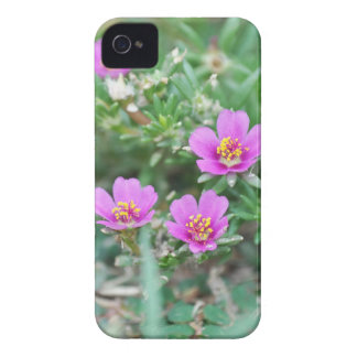 Blommigt iPhone 4 Cases