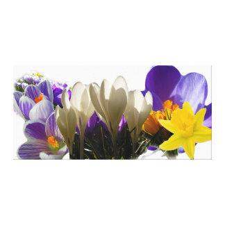Blommor av våren canvastryck