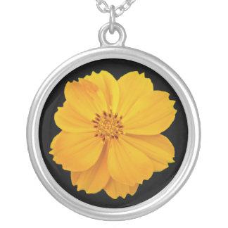 Blommor för kosmos (kosmossulphureus) silverpläterat halsband