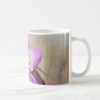 blommor för purpurfärgad clematis kaffemugg