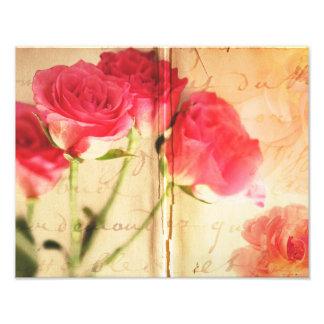 Blommor för ro för rosa rosbakgrundsCollage Fototryck