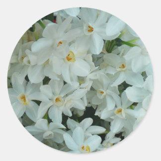 Blommor för vit för Paperwhite pingstlilja delikat Runt Klistermärke