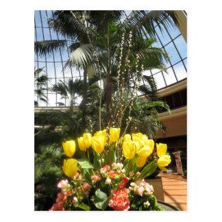 Blommor från fjärilsträdgården Las Vegas USA Vykort
