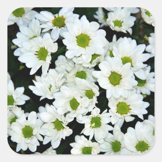 Blommor Fyrkantigt Klistermärke