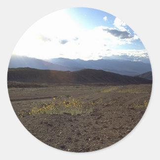 Blommor i Deathet Valley Runt Klistermärke