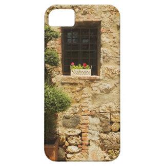 Blommor i ett fönster boxas på en fönstersill, iPhone 5 Case-Mate fodral