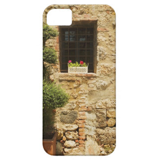 Blommor i ett fönster boxas på en fönstersill, iPhone 5 Case-Mate skal
