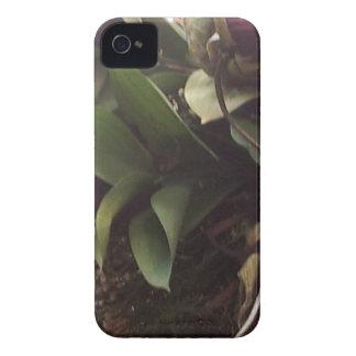 blommor iPhone 4 Case-Mate case
