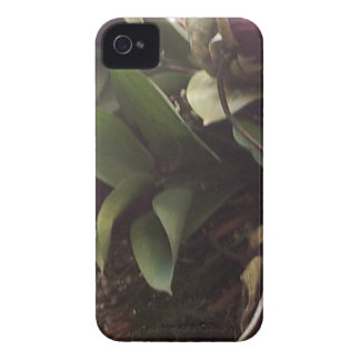 blommor iPhone 4 Case-Mate skal