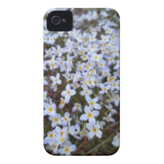 Blommor iPhone 4 Hud