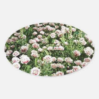 Blommor på Keukenhof, Nederländerna Ovalt Klistermärke