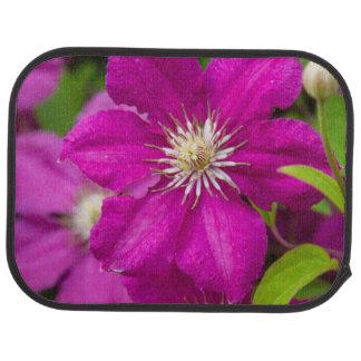 Blommor på Robinettes Apple Haus och gåvaladugård Bilmatta