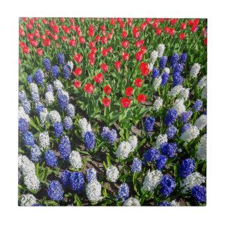 Blommor sätter in med röda blåtttulpan och hyacint kakelplatta