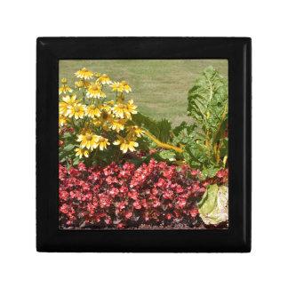 Blomsterrabatt av coneflowers och begonias smyckeskrin
